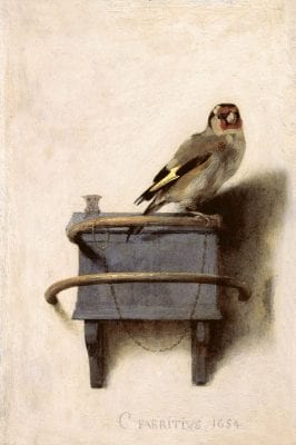 The Goldfinch,  Carel Fabritius, 1654, Mauritshuis, The Hague