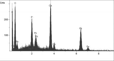 X-ray spectra from the upper most yellow layer of the scarf inScholar Interrupted at His Writing(cross hair in Fig. 37) showing a layer composition as a whole, with pigmentation by vivianite and calcite with an ear absence of lead white