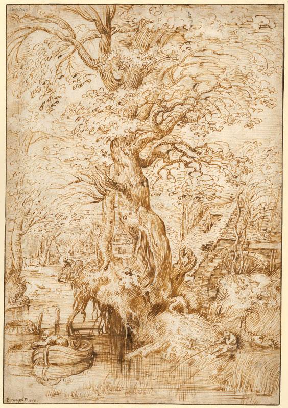 Pieter Bruegel the Elder,  Pond in a Wood,  ca. 1554,  Koninklijke Bibliotheek Albert I, Brussels