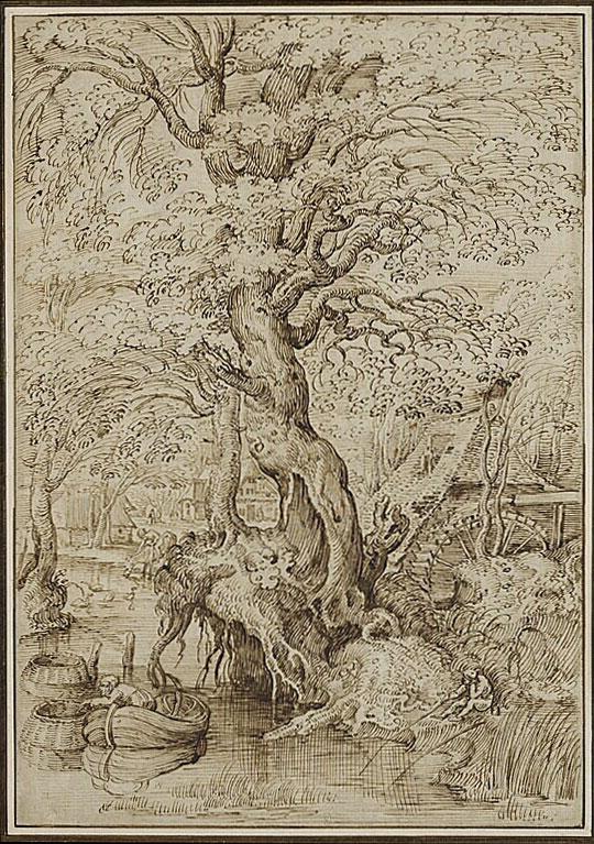 Pieter Bruegel the Elder,  copy of( ?) Pond in a Wood,  ca. 1554,  Musée du Louvre, Cabinet des Dessins, Paris