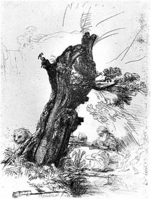 Rembrandt van Rijn,  Saint Jerome Beside a Pollard Willow, 1648, Metropolitan Museum of Art, New York