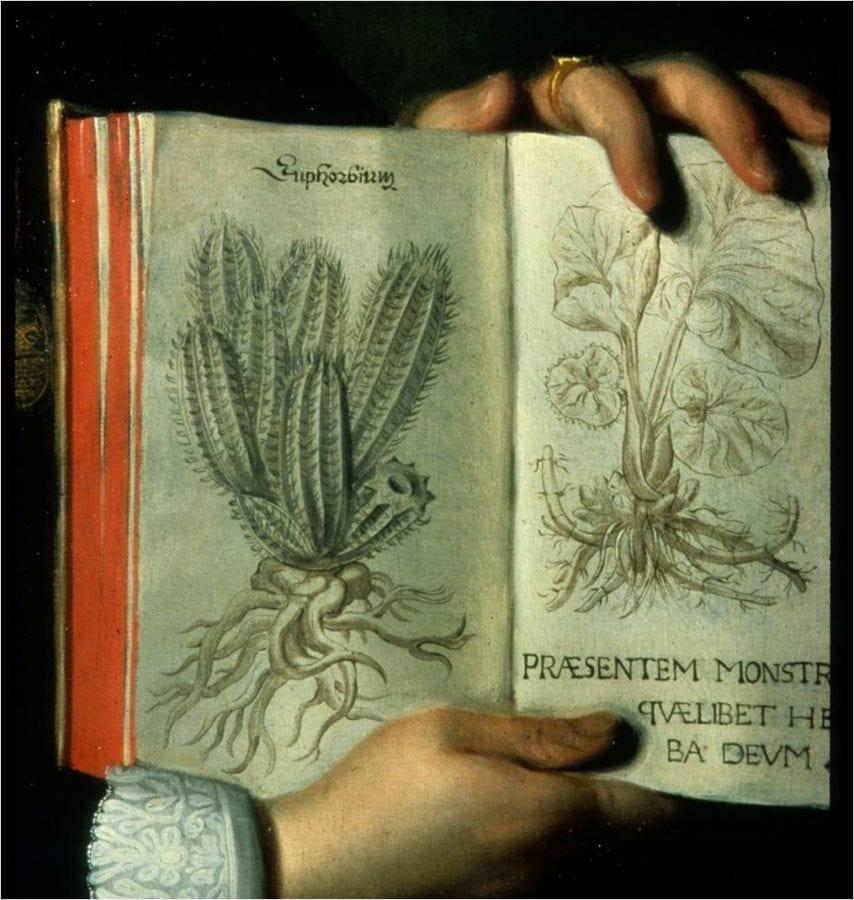 Fig. 21 Detail, Moreelse,Portrait of a Scholar.