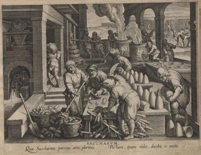 Jan van der Straet/Phillips Galle, Saccharvm, plate 14 fromNova Reperta(Antwerp, European Cultural Heritage Online (ECHO)
