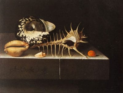 Adriaen Coorte,  Still Life with Shells, 1698, United States, Private Collection