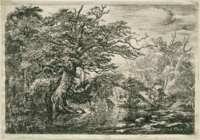 Jacob van Ruisdael (Haarlem 1628/29 –1682 Amsterdam),  Travelers in a Forest Marsh,  1650–55,