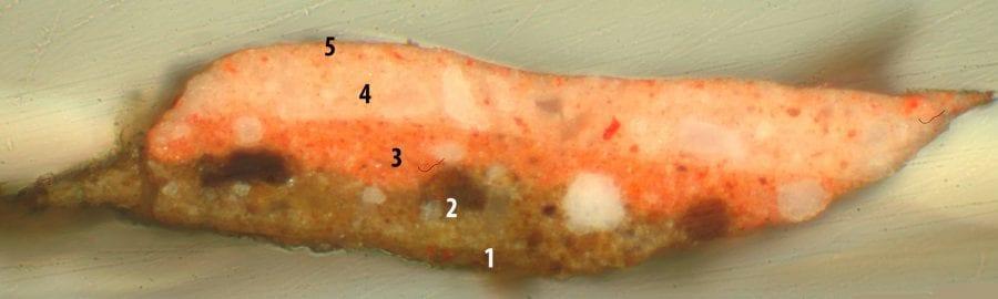 Paint cross-section 5: flesh color of Bacchus's,