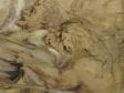 Fig 14-final Rubens Lion Hunt detail