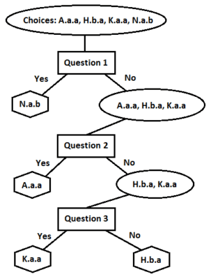 Decision tree for four variants of Foolscap with Five-pointed Collar in figure 11