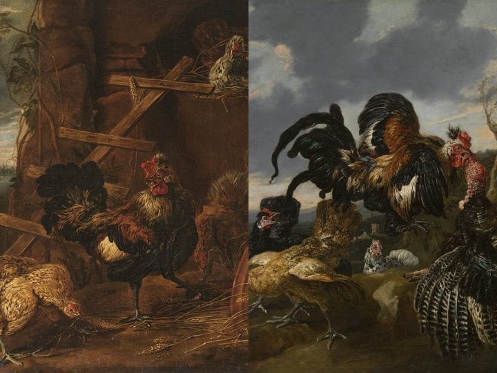 Learned Fable, Living World: Artistry, Knowledge and Attention to Nature in Two Aesopic Paintings by Joannes Fyt