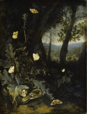 Otto Marseus van Schrieck, Forest Floor with Thistle and a Snake, ca. 1655, Staatliches Museum Schwerin